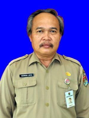 Drs. HERMAN JAYA